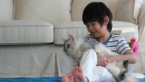 Asian Child Playing Persian Cat In Living Room