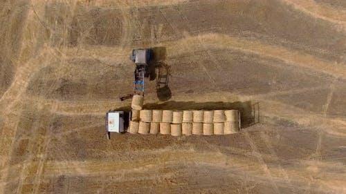 Aerial View Loading Haystacks Into a Hay Cart