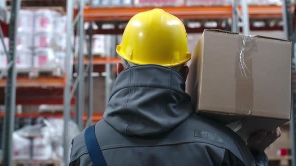 Thumbnail for Warehouse Worker Carrying Cardboard Box
