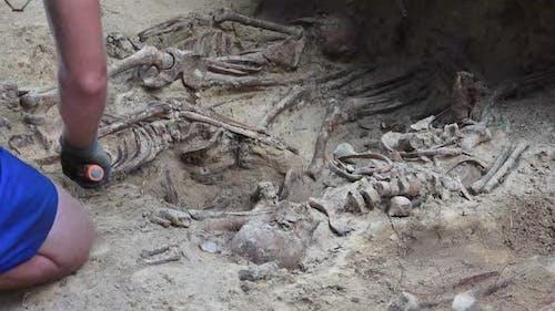 Massengrab oder archäologische Ausgrabungen 9