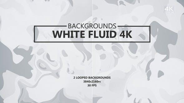 Thumbnail for Fluid White Backgrounds