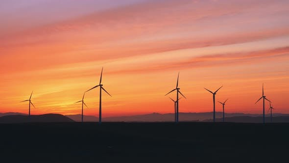 Wind Farm At The Sunset