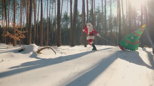 Santa Claus Pulls Sleigh with Christmas Tree Doll