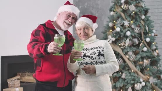 Thumbnail for Pleasant Caucasian Old Couple in Christmas Hats Holding Glasses, Looking at Camera and Smiling