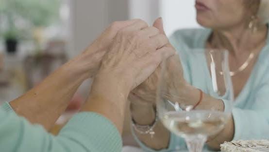 Closeup of Female Senior Caucasian Hands Holding and Stroking
