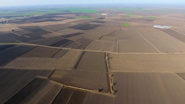 Riesige landwirtschaftliche Flächen