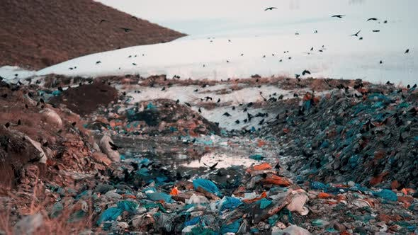 City Waste Dump Station