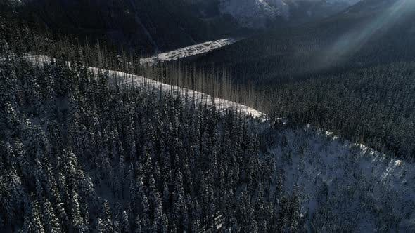 Thumbnail for Aerial Of Snowy Mountain R Idge In Thick Forest Trees