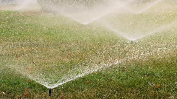 Thumbnail for Garden Sprinklers Irrigate the Grass in the Park in Summer. Automatic Irrigation System