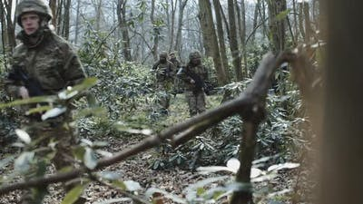 Army Exercise in Forrest