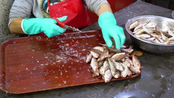 Thumbnail for Cutting Fish in Market Stall. Woman Manual Cleaning and Cuts Fresh Fish