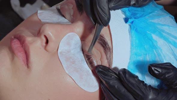 Thumbnail for Laminating of Eyelashes