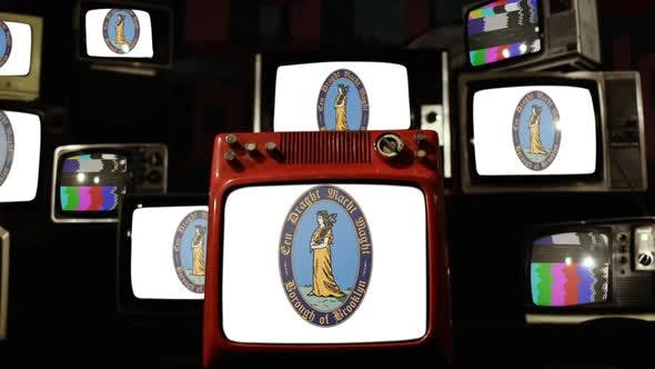Thumbnail for The flag of Brooklyn and Retro TVs.