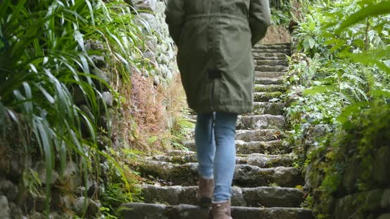 Thumbnail for Woman hiking and walking in the forest