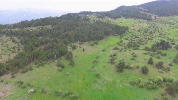 Tableland on the Mountain