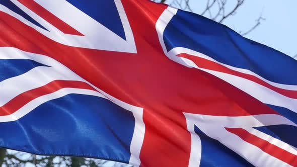 Cover Image for UK Flag and Park Trees