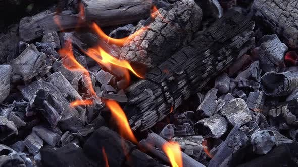 Coal Fire And Ashes For Barbecue 7