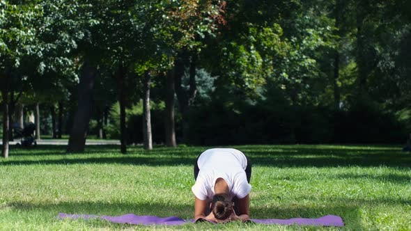 Thumbnail for Fit Girl Doing Yoga in the Park on a Sunny Day