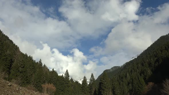 Cloudy Sky of Mountains Through the Wooded Valley