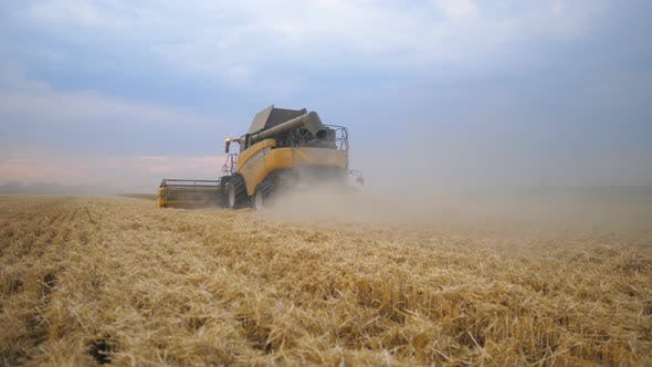 Thumbnail for Grain Harvester Working in Field Gathering Crop of Ripe Wheat. Combine Riding Through Rural Leaving