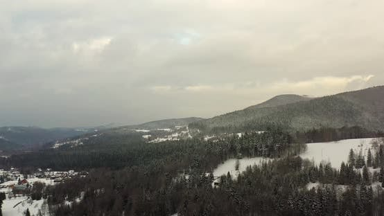 Thumbnail for Forest Covered with Snow Aerial View
