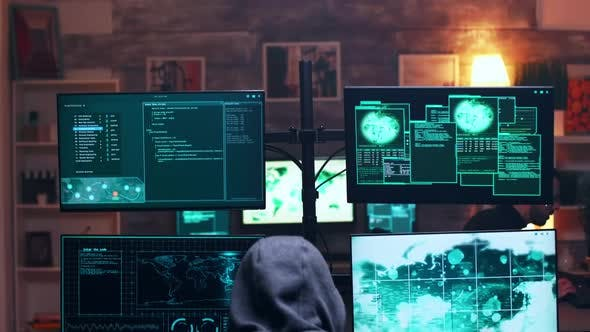 Back View of Male Hacker Wearing a Hoodie