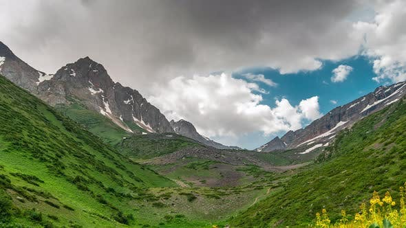 Cover Image for Mountain Green Valley Landscape. Beautiful Mountain Green Valley Panorama. Mountain Meadow Flowers