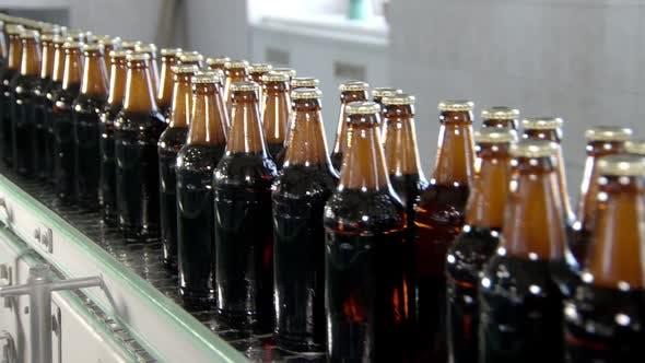 Conveyor Belt in Bottling Workshop, Bottles with Beer Are Moving and Transporting