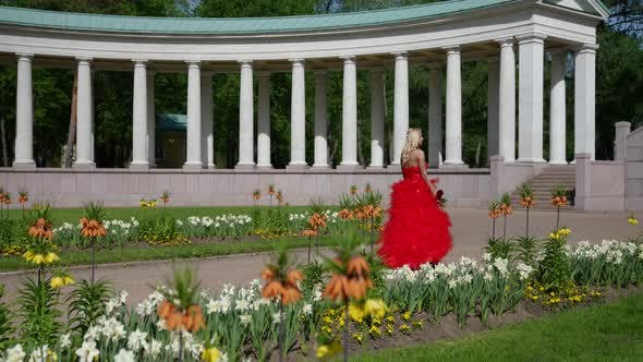a Blonde in a Red Fluffy Dress and with a Rose is Walking Against the Background of Park Buildings