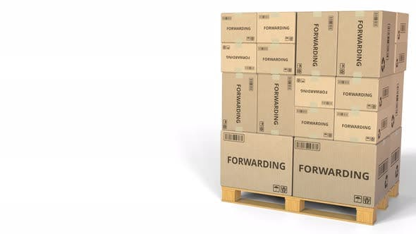 Thumbnail for Cartons with FORWARDING Text