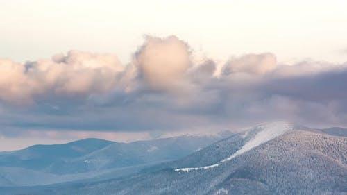 Beautiful Mountain Evening, Cloudy Winter Fir-tree