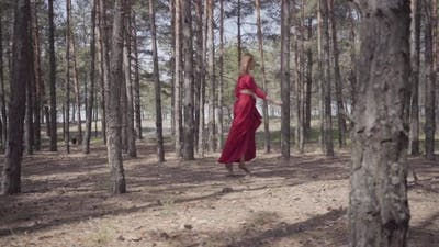 Skill Graceful Woman in Red Dress Dancing in the Forest Landscape. Beautiful Contemporary Dancer