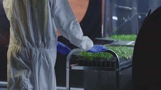 Scientist in Hazmat Suit Checking Plant Incubators