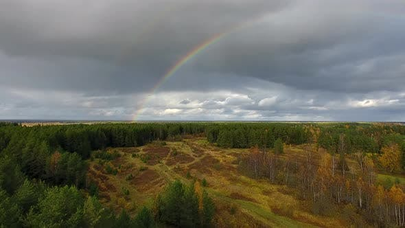 Thumbnail for Rainbow over Forest in Autumn
