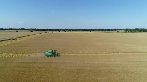 Thumbnail for Aerial Drone Footage. Combine Harvester Gathers the Wheat. Harvesting Grain Field