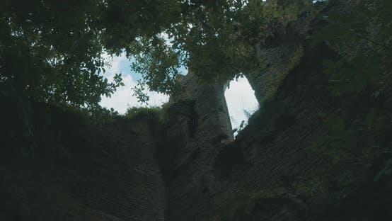 Thumbnail for Vegetation And Castle Ruins