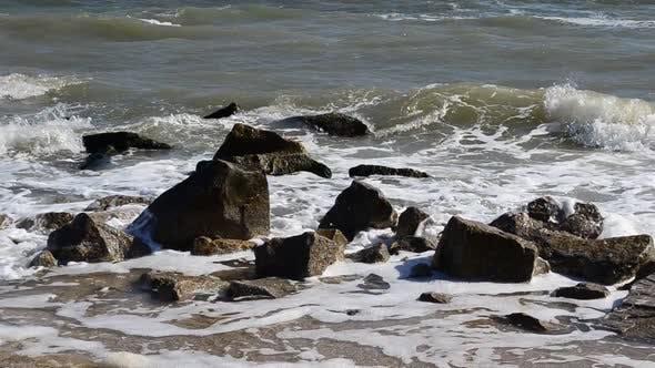 Thumbnail for Sea 4