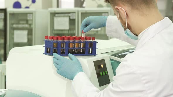 Thumbnail for A Professional Lab Technician Checks Each of the Tubes Before Loading Them Into a Laboratory