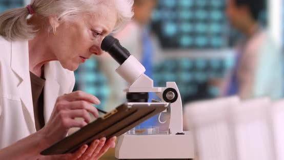 Thumbnail for Senior woman medical researcher taking notes on tablet computer in busy lab