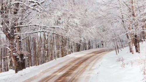 Scenic Panning View Sabaduri Forest With Road In Winter