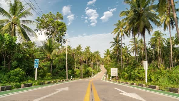 Thumbnail for Beautiful road cutting through lush tropical jungle in summer