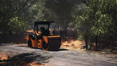 Road Roller Tractor in the Forest