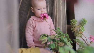 Little Girl Sniff a Pink Flower