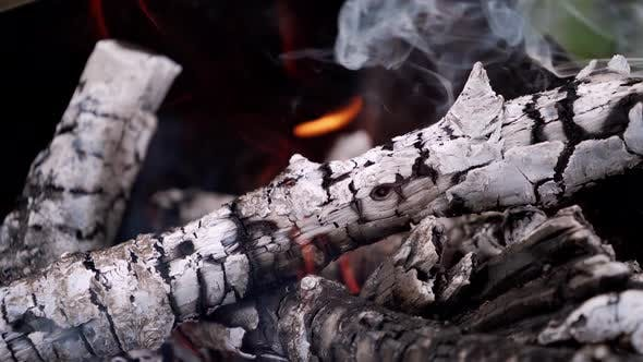 Thumbnail for Glowing logs with smoke in fire
