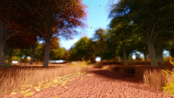Thumbnail for Colorful Foliage In The Autumn Park