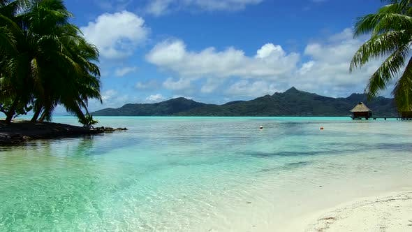 Thumbnail for Tropical Beach and Bungalows in French Polynesia