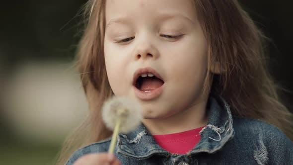 Thumbnail for Charming Little Girl Blowing Dandelion