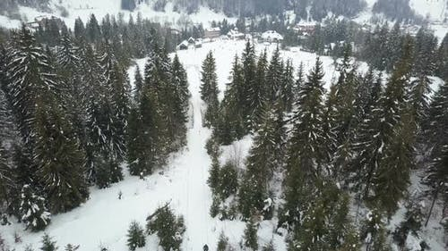 Flight Over a Ski Resort in Carpathian Mountains. Aerial View of People Descending on Skis.