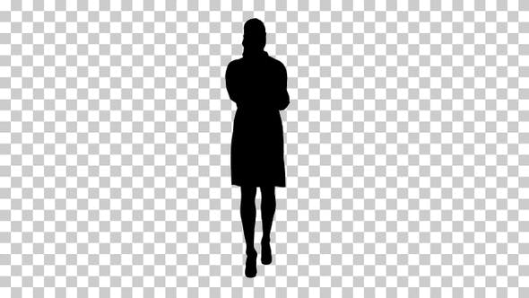 Thumbnail for Silhouette Smiling female doctor on the phone talking while