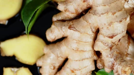 Fresh Ginger Root with Leaves Rotates Slowly.